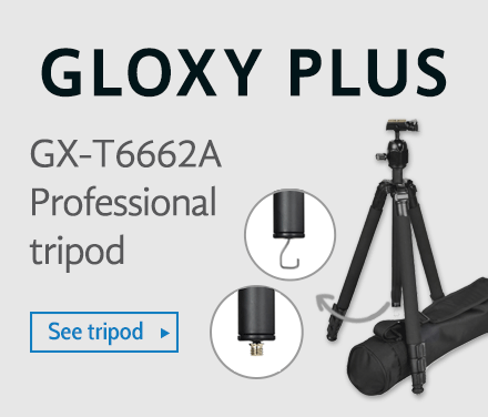 loxy GX-T6662a Plus